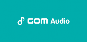 GOM Audio Crack 2.2.25.2 With Full Torrent Download 2020